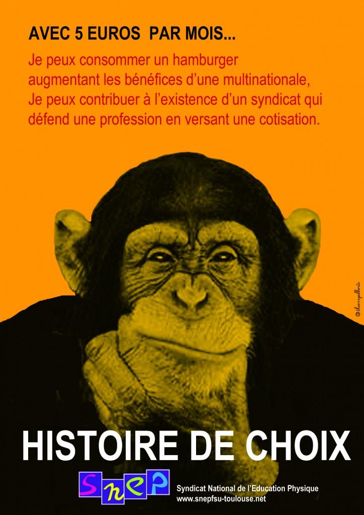 Snep Toulouse SINGE